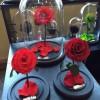 永生花玻璃罩手工创意牡丹花标本罩子私人定制园艺玻璃瓶子