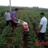 微耕机开沟机小型农用开沟器最小开沟机挖掘机专用开沟机